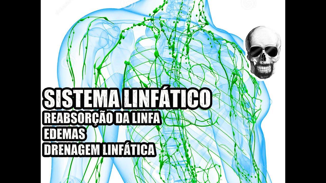 Vídeo Aula 138 - Anatomia Humana - Sistema Linfático: Linfa, Edemas ...