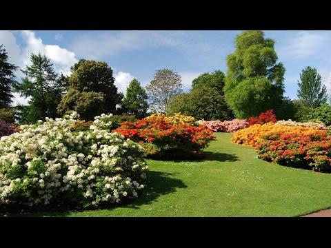 Edinburgh Scotland Tourism Travel Video Guide Royal Botanic Garden