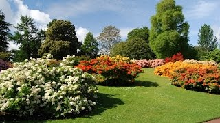 Edinburgh Scotland Tourism Travel Video Guide Royal Botanic Garden