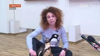 Пингвины Ца-Ца и Люба посетили Брянский областной художественный музей