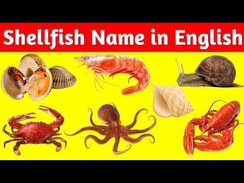 Shellfish Names In English 🦀|🦐#Sea_Food_For_Hoteliers 🐌|🐚 #Hotel_Management |