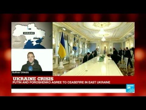 Ukraine Crisis - Putin agrees to ceasefire in East Ukraine