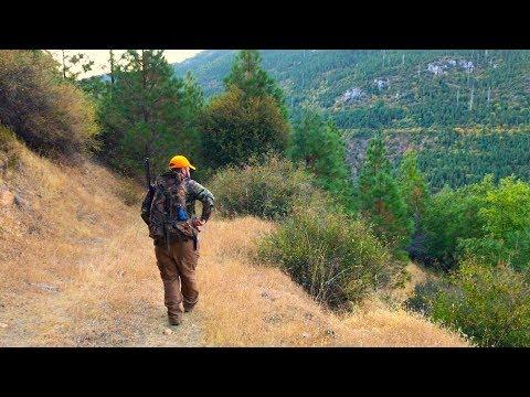 California Hunting D5 (Deer Hunt)