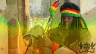 Reggae Mix; Roots Roots By Iron Heart Sound & Chessman Records