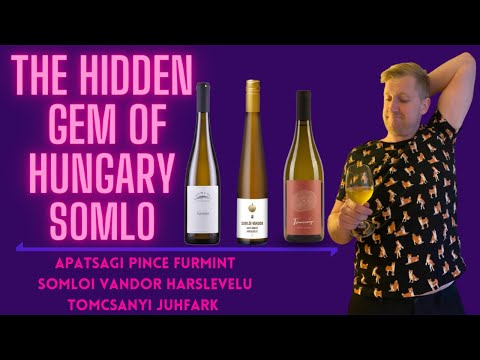 Hungarian wine, which you have never tried! Vulcanic Somlo