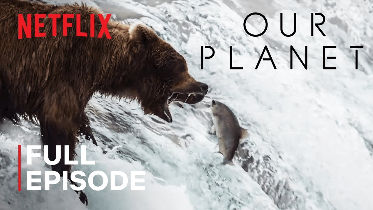 Download Our Planet | Fresh Water | FULL EPISODE | Netflix