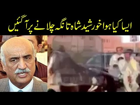 Opposition Leader Khurshid Shah becomes Tonga driver in Sukkur | 24 News HD