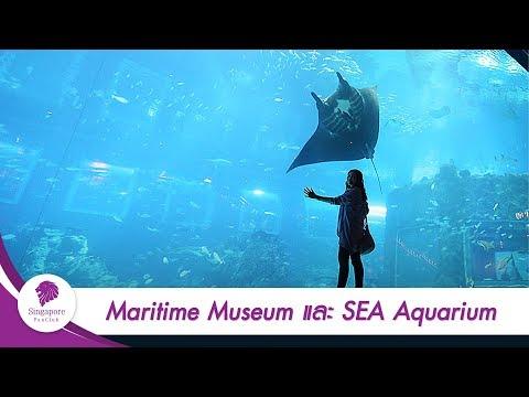 [Singapore] Maritime Museum และ SEA Aquarium