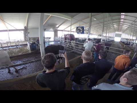 Farm RV Road trip North america calgary-chicago-toronto 2015