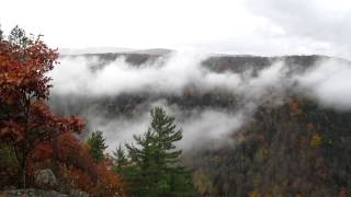 Pennsylvania Grand Canyon Mist and Fall Foliage