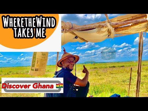 Exploring a WEST AFRICAN RURAL AREA in Ghana - Rice fields | Asutuare, Ghana