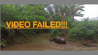ANG ISDA SA SAPA -Epic Fails video (SILINGAN TA VINES)
