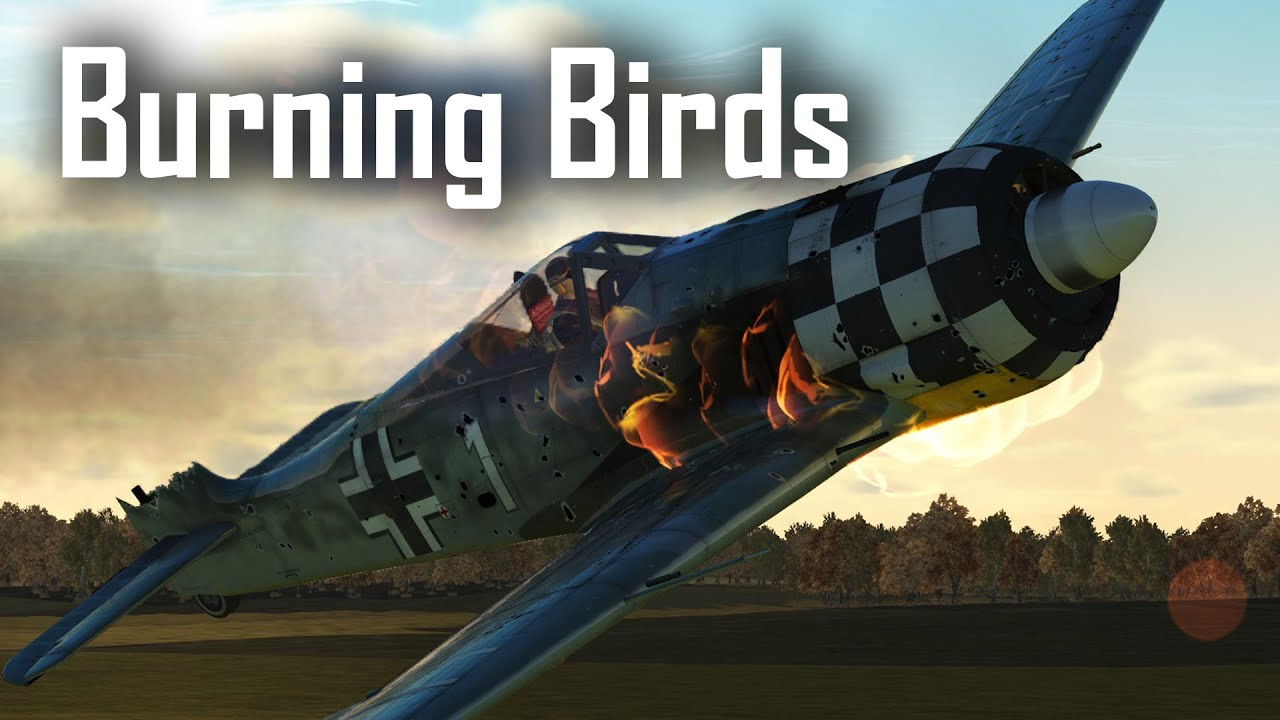 Butchering the butcher birds - P-51D - Ace in a day