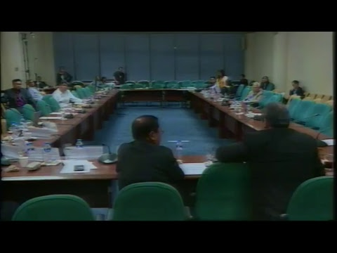 Committee on Constitutional Amendments and Revision of Codes (February 1, 2018)