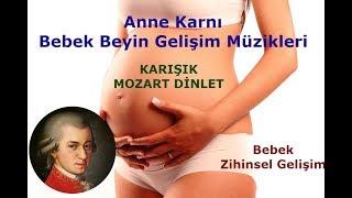 Mozart Bebek Zeka Gelişim Müziği