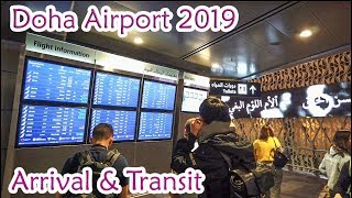 Doha Airport Arrival&Transfer 2019
