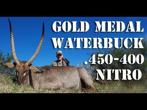 Hunting SCI Gold Medal Waterbuck with the Ruger No.1 Tropical