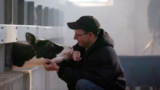 A Tribute To Wisconsin Dairy Farmers