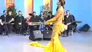 Turkish Belly Dance -Tanyeli 1995