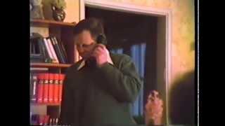 Lepakkotiimi - Vintiltä Kellariin
