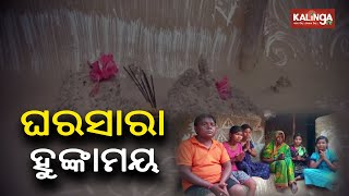 Family Lives In Home Filled With Snake Burrows In Cuttack District    KalingaTV