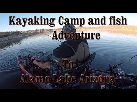 Kayaking Camp and fish adventure to Alamo
