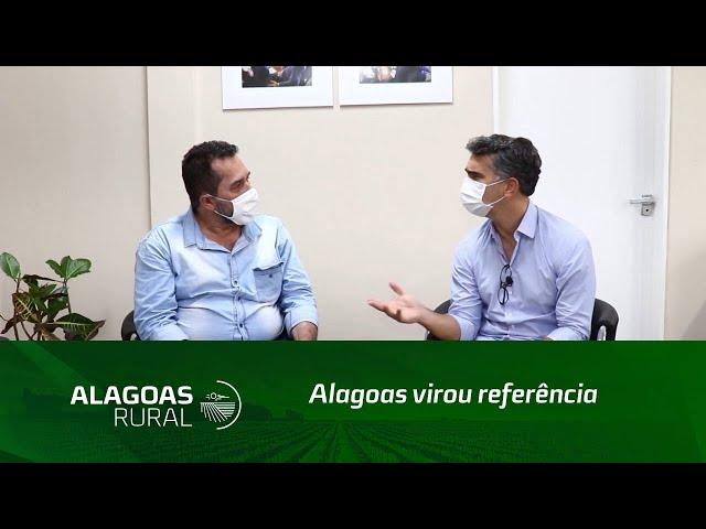 Alagoas virou referência na produção de energias renováveis