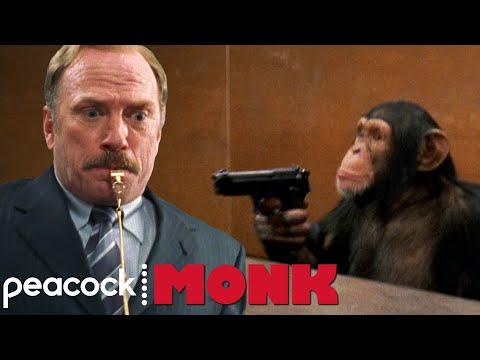 Can A Chimpanzee Fire A Gun? | Monk