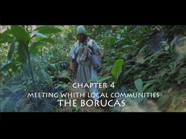 Mamos in Costa Rica - Chapter 4 - THE BORUCAS -