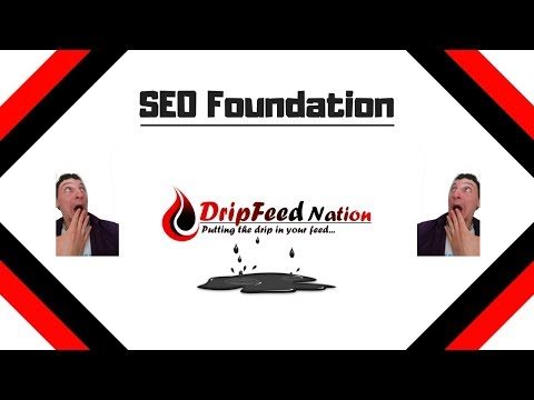 About Your Website's SEO Foundation Service | Dripfeed Nation