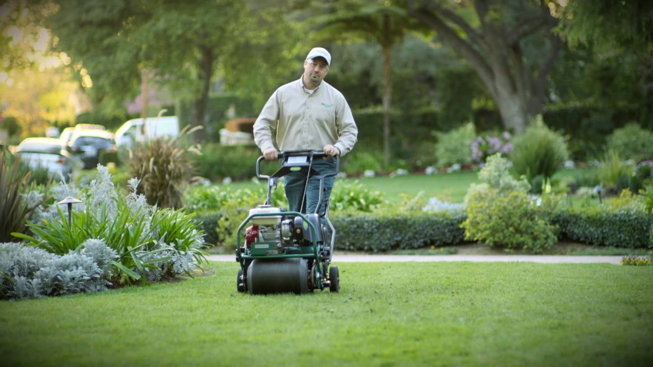 When It Comes To Choosing Between Lawn Doctor Vs Trugreen You Need Know That Both Companies Do Have Their Strengths And Weaknesses