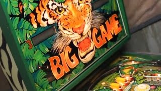 1980 Stern BIG GAME pinball machine