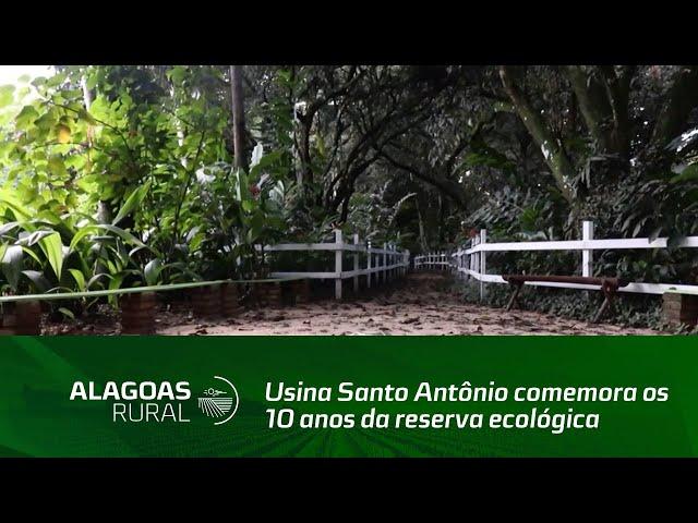 Usina Santo Antônio comemora os 10 anos da reserva ecológica