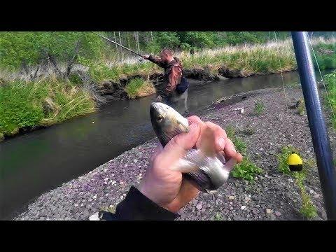 Ловля ,Рыбалка на