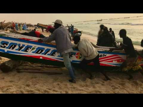 """The Day's Catch"" Fishing Port - Nouakchott, Mauritania"