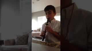 Recorder - One Thing, One Direction