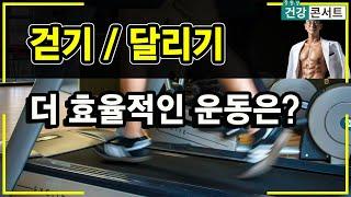 걷기운동과 달리기, 뭐가 더 다이어트에 효율적인 운동일…