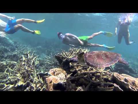 Coral Bay Snorkelling - GoPro HD
