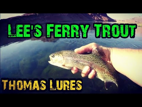Fishing Lee's Ferry Walk-In Using Thomas Bouyant Lures 2019