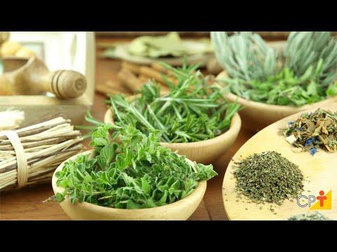 Clique e veja o vídeo  Curso a Distância Produção Comercial de Plantas Medicinais CPT