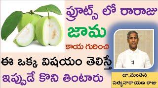 జామకాయ గురించి ఈ ఒక్క విషయం తెలిస్తే ఇప్పుడే కొని తింటారు|Health Benefits of Guava Fruit|Manthena