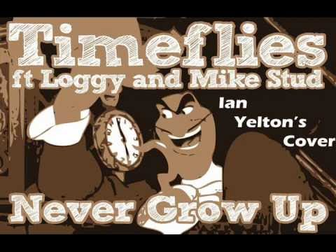 Timeflies - Never Grow Up (Acoustic Cover) | Ian Yelton