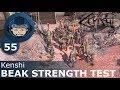 Beak strength test kenshi ep 55 nathan s story mp3