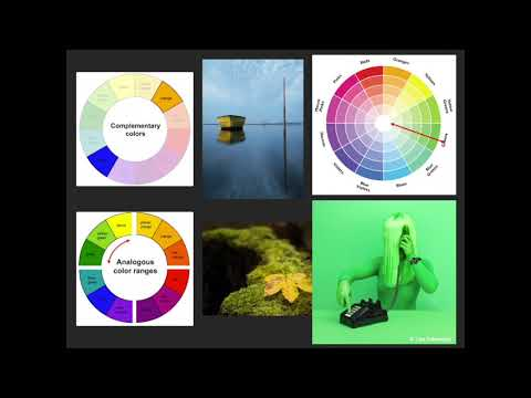 Download Levy Park Photography Workshop - Understanding Color