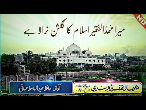 New Tarana e Mahad ul Faqeer |ترانہ مھدالفقیر  By Hafiz Abdulbasit Hassani