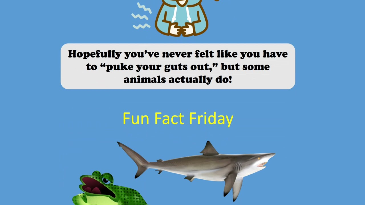 Fast Fact 5/14/2021