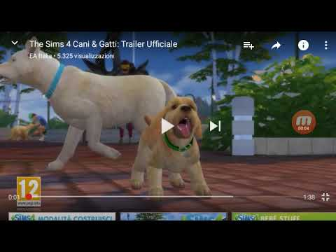 The sims 4 cani e gatti analizziamolo youtube for Youtube cani e gatti