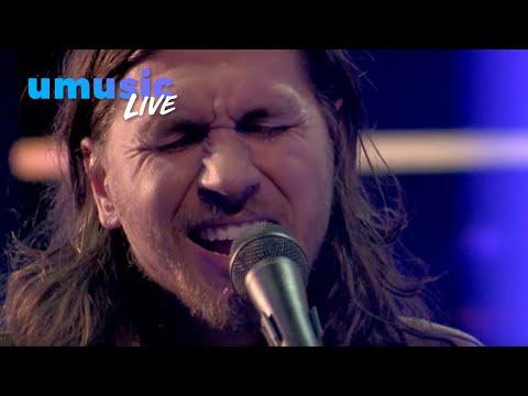 The Teskey Brothers - Hold Me | Live bij DWDD (2019)