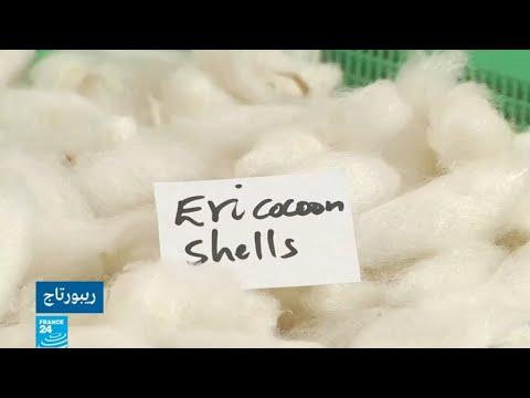 كينيا ترفع تحدي إنتاج وتصدير خيوط الحرير  - 17:54-2019 / 6 / 11