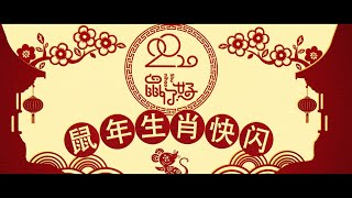 The Culture of Chinese Zodiac